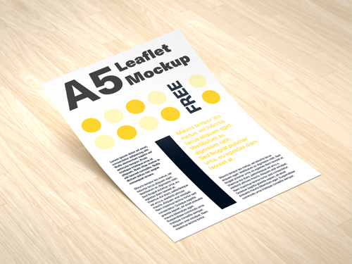 Flyers printing services